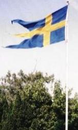 flagga1